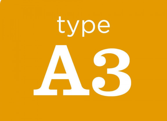 Type A3